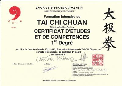 Diplôme d'études de 1er année en Tai Chi Chuan